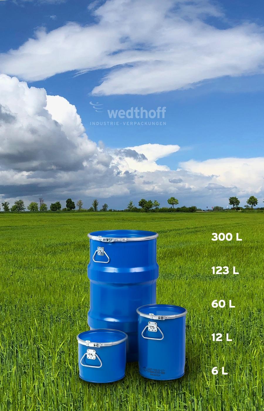 Bergungsfässer / Bergungsverpackungen mit Fass Volumen 6 - 12 - 60 -123 -300 Liter. T-Codierung. Deutsche Fabrikation von WEDTHOFF Industrieverpackungen